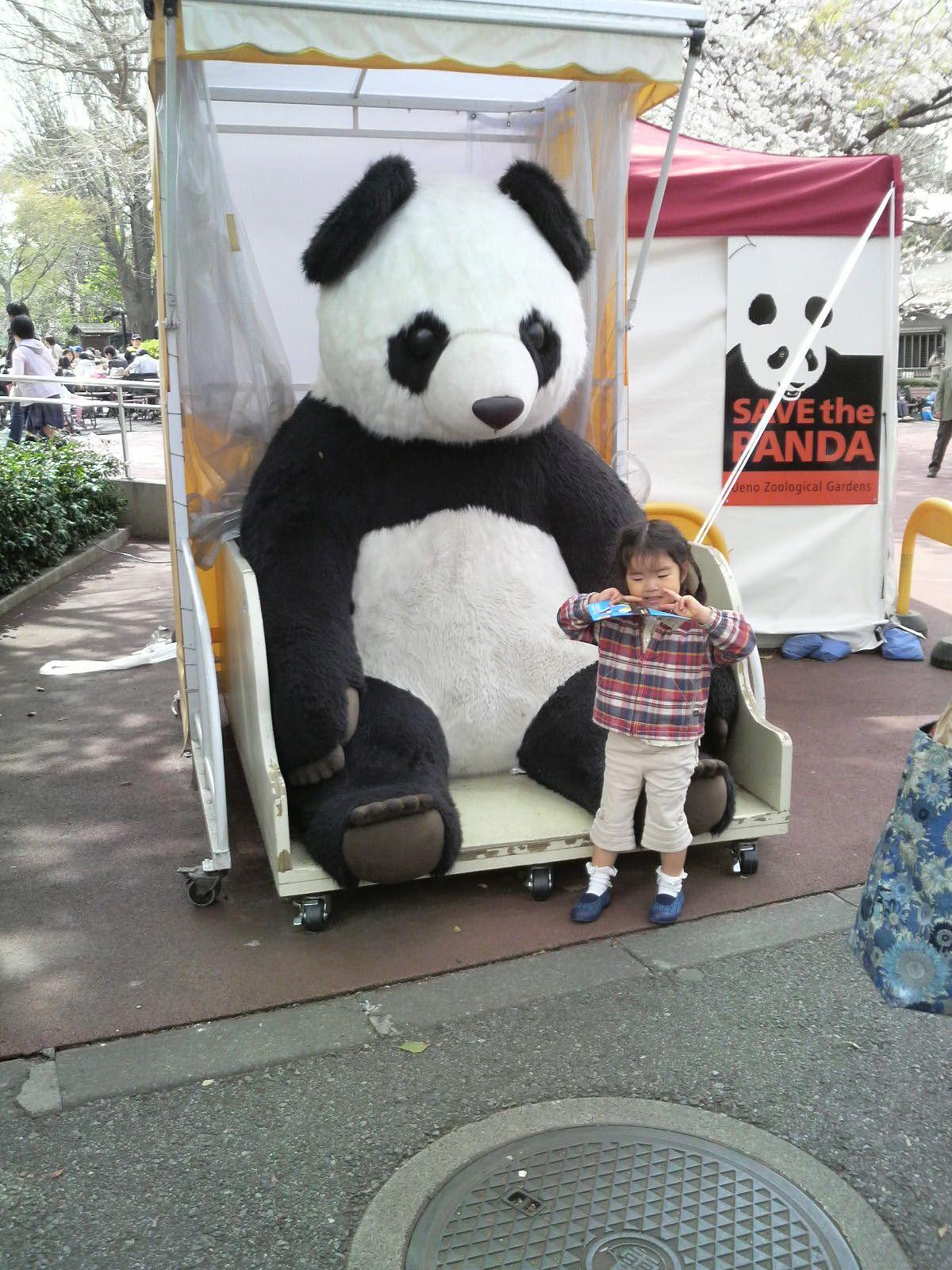 Panda1_2