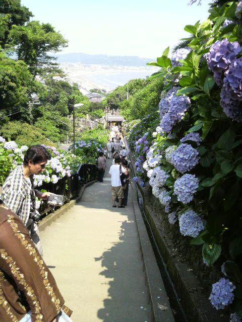 Kamakura4